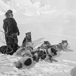 Amundsen 05