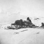 Amundsen 11