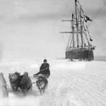 Amundsen 14